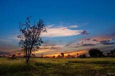 Fotografia produzida na Golden Hour do Cerrado brasileiro *** O Poente do Cerrado é um dos mais belos que já vi, com suas cores vibrantes e harmoniosas *** Uma nova poesia a cada novo poente.