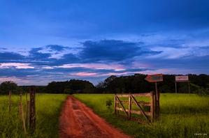 Welcome To Jocum Cerrado